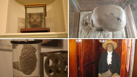 9 متاحف تحتوي على أعضاء وبقايا أجساد العلماء والمشاهير والجواسيس!