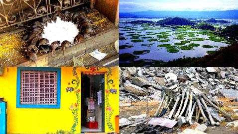 بالصور.. شاهدوا  أغرب الأماكن الموجودة في الهند